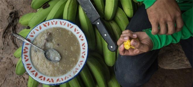 """Giat minh mon an """"di thuong"""" cua bo lac trong rung gia Amazon-Hinh-4"""
