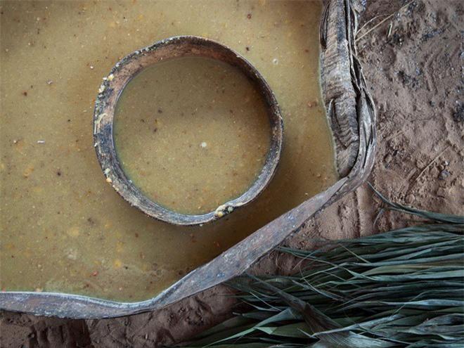 """Giat minh mon an """"di thuong"""" cua bo lac trong rung gia Amazon-Hinh-7"""