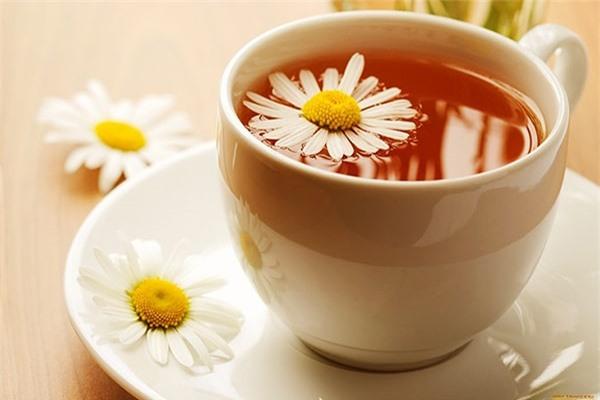 Trà hoa cúc giúp bạn giảm cân nhanh