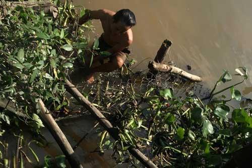 Tiền Giang: Hai thanh niên bị đuổi đánh nhảy xuống sông tử vong