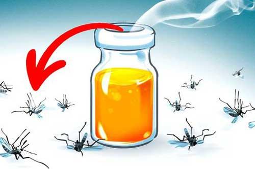 11 sản phẩm có tác dụng đuổi côn trùng hiệu quả