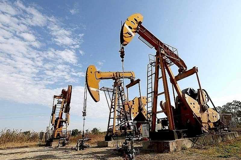 Giá xăng, dầu (26/11): Tiếp tục tăng mạnh