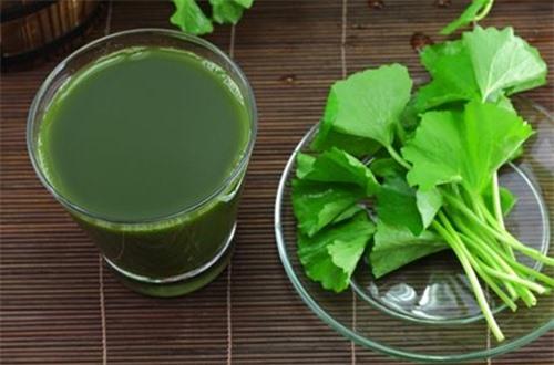 Ăn rau má hoặc uống nước ép rau má rất tốt cho hệ tim mạch