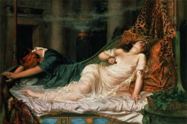 Nữ hoàng Cleopatra không tự sát bằng rắn độc?