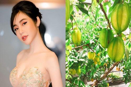 Elly Trần mê vườn tược
