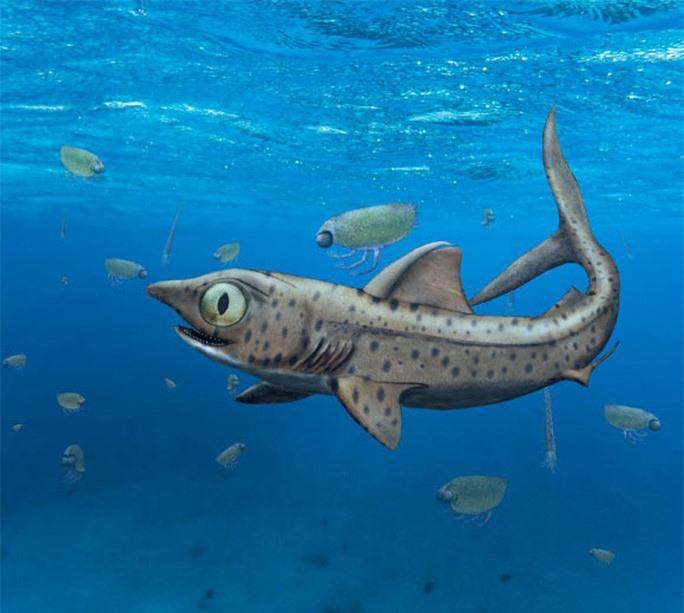 Kinh dị vua thủy quái 365 triệu tuổi: Loài chưa từng thấy trên thế giới - Ảnh 1.