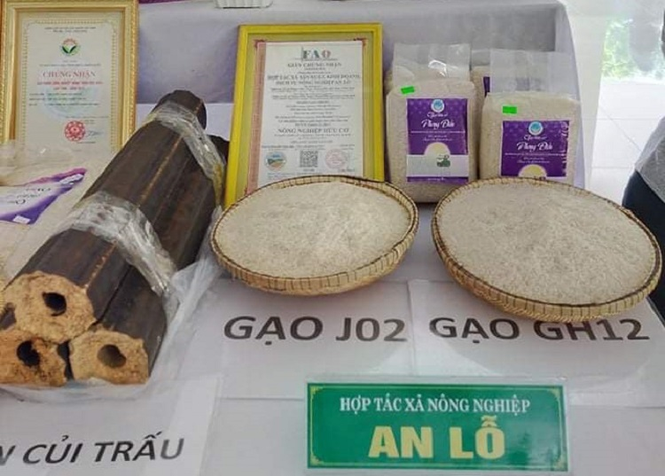 Gạo hữu cơ An Lỗ của Hợp tác xã sản xuất, kinh doanh, dịch vụ nông nghiệp An Lỗ, được tỉnh Thừa Thiên Huế công nhận là sản phẩm OCOP hạng 4 sao.
