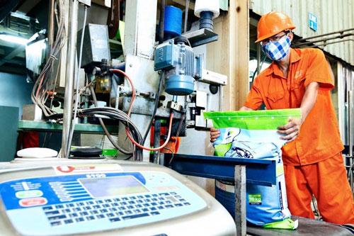 Thị trường thức ăn chăn nuôi Việt Nam dự kiến tăng trưởng kép 5,06%/năm
