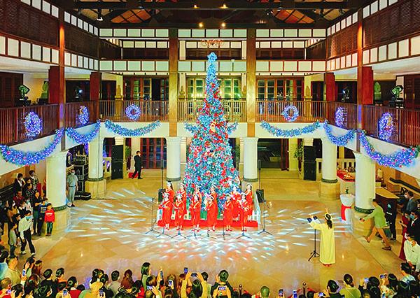 """Đà Nẵng: Rực rỡ """"Lễ thắp sáng cây thông Noel"""" tại Furama Resort"""