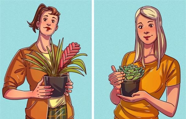 Loại cây bạn chọn trồng có thể nói nhiều điều về bạn.