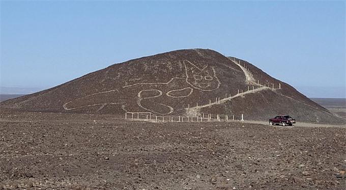 Hình con mèo trên sườn núi ở Peru. Ảnh: EPA.