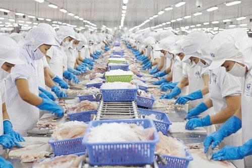 Mexico là thị trường đầy tiềm năng cho thuỷ sản Việt. Ảnh minh hoạ.