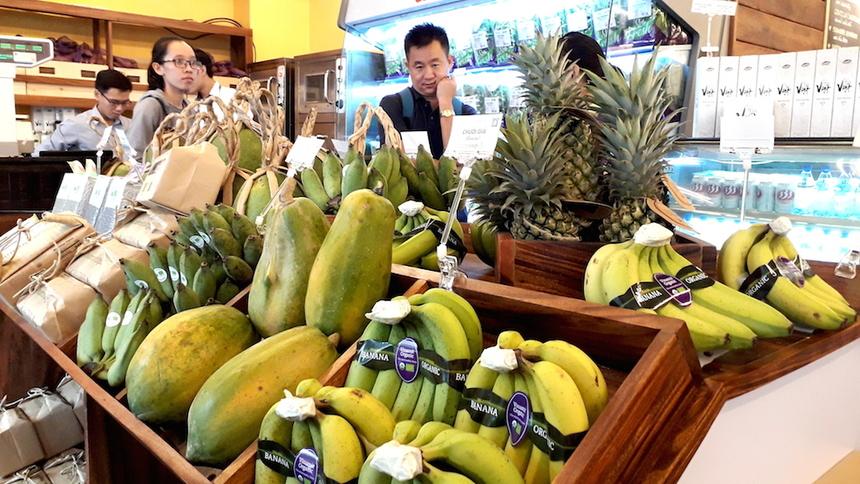 """Nhu cầu tiêu thụ rau củ quả hữu cơ trên thế giới rất lớn, được ví như """"mỏ vàng"""" đang cần các DN Việt khai phá"""