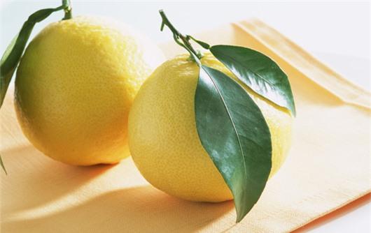 Giảm mỡ bụng hiệu quả với 5 loại thực phẩm tự nhiên - ảnh 3