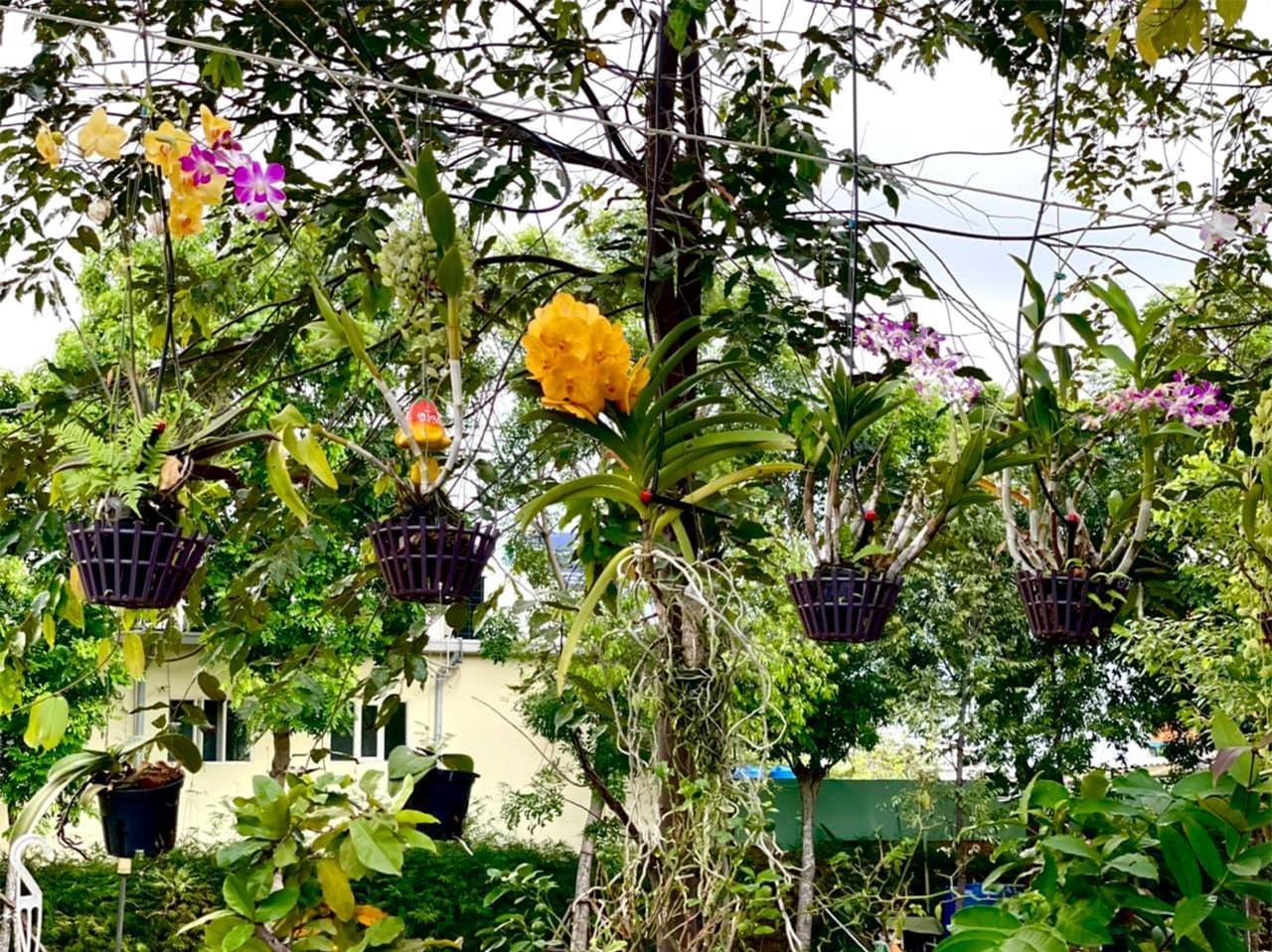 Á hậu Trịnh Kim Chi trồng hoa trong biệt thự 200m2