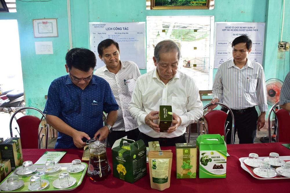 Chủ tịch UBND tỉnh Thừa Thiên Huế Phan Ngọc Thọ kiểm tra các sản phẩm OCOP được làm từ rau má của HTX Quảng Thọ 2.