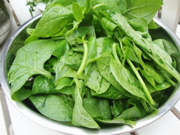 Phụ nữ có thai dùng rau mùng tơi sẽ dễ đẻ hơn