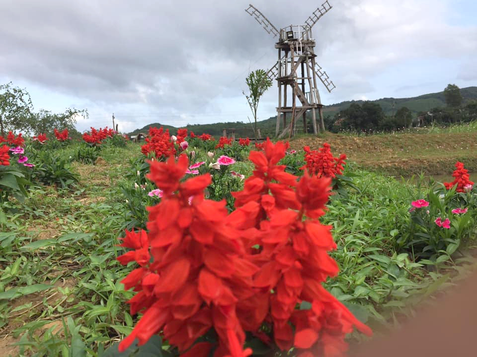 Du lịch nông nghiệp- du lịch xanh