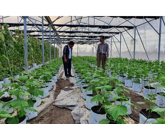 Đồng Soi Quảng Bình Du lịch nông nghiệp