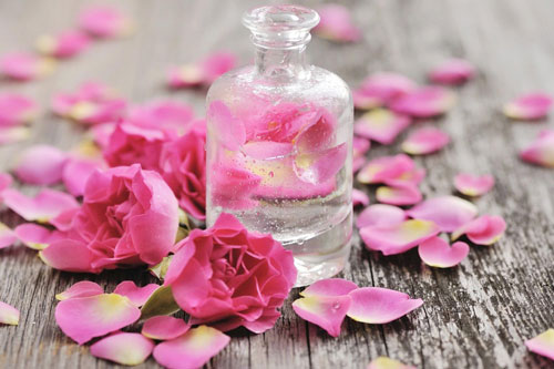 Nước hoa hồng rất tốt cho da.