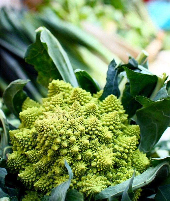 Romanesco là một trong những loại rau tuyệt vời cho sức khỏe