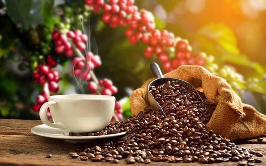 Xuất khẩu cà phê dự báo sẽ tăng trong những tháng đầu năm 2021.