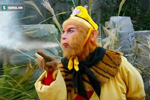 Tôn Ngộ Không thoát kiếp bị luyện thành nước nhờ 3 sợi lông Bồ Tát ban cho, vậy rốt cuộc nguyên hình của 3 sợi lông đó là gì?