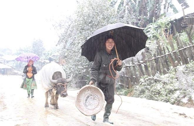 Dự báo mới nhất về thời tiết Tết Nguyên đán Tân Sửu 2021