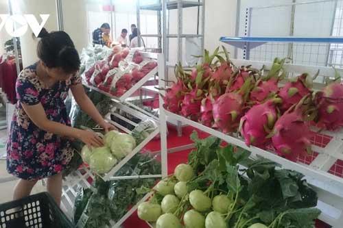 Ngành nông nghiệp phát triển vượt trội sau khi gia nhập WTO