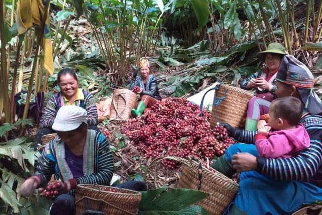 Hiệu quả giảm nghèo ở những địa bàn đặc biệt khó khăn