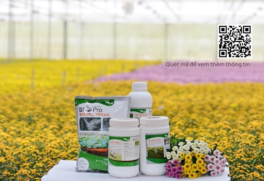 Dalat Hasfarm luôn sử dụng các chế phẩm sinh học an toàn trong sản xuất hoa. Đây là doanh nghiệp duy nhất tại Việt Nam áp dụng phương pháp thiên địch (dùng côn trùng có lợi để diệt sâu bệnh).