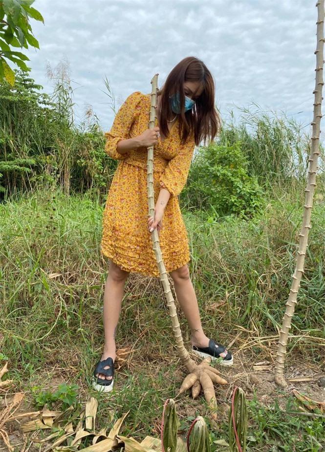 Sao Việt ở quê ăn Tết, bình dị khó nhận ra - ảnh 2