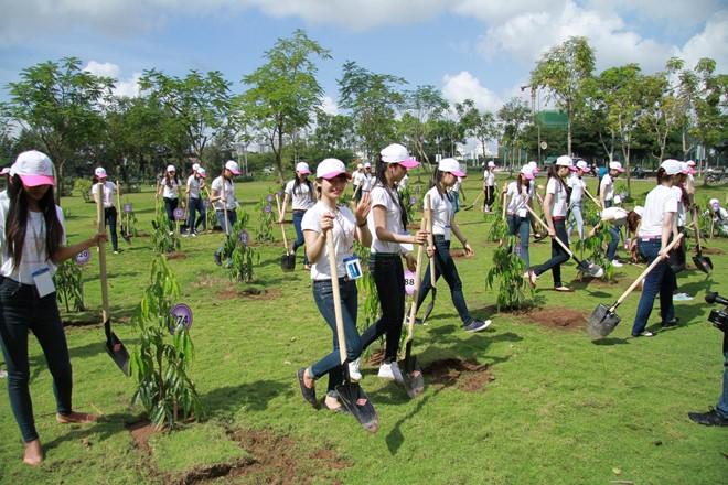 Rà soát dự thảo kế hoạch triển khai thi hành bảo vệ môi trường.