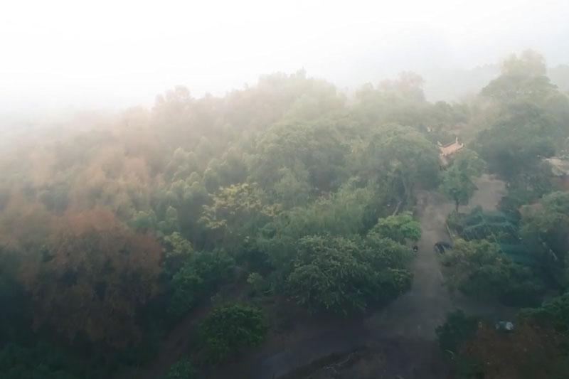 Ngắm chùa cổ, lạc lối giữa rừng phong thay lá lớn nhất Việt Nam