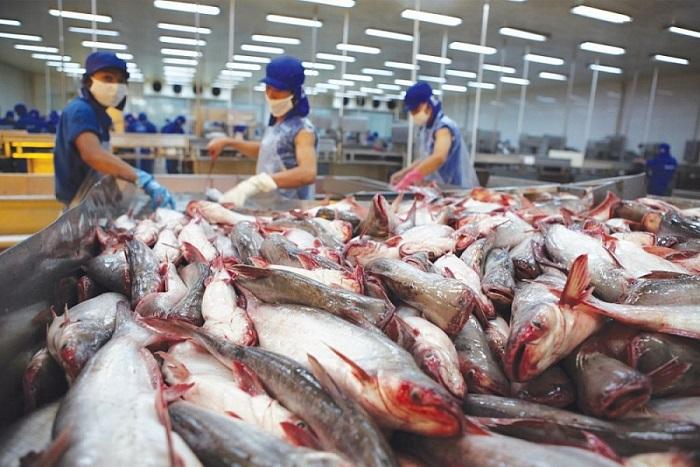 Gần 700 doanh nghiệp thủy sản Việt Nam được phép xuất khẩu vào thị trường Đài Loan.