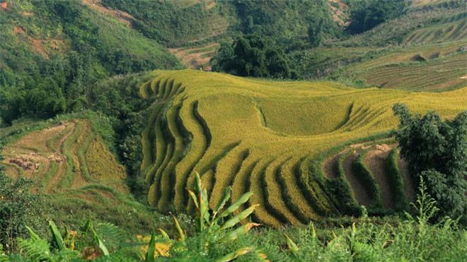 CNN gợi ý 10 điểm đến tuyệt vời nên khám phá ở Việt Nam - Ảnh 3.