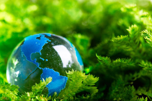 Luật bảo vệ môi trường năm 2020: Sẽ giảm thiểu thủ tục hành chính, đơn giản hóa các thủ tục