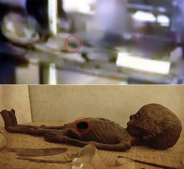 Bằng chứng gây tranh cãi mới về người ngoài hành tinh