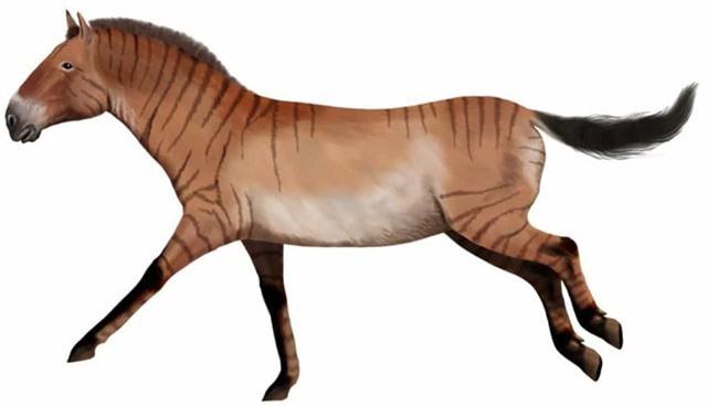 Chân dung những loài động vật thời tiền sử - Ảnh 10