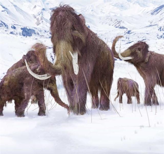 Chân dung những loài động vật thời tiền sử - Ảnh 2