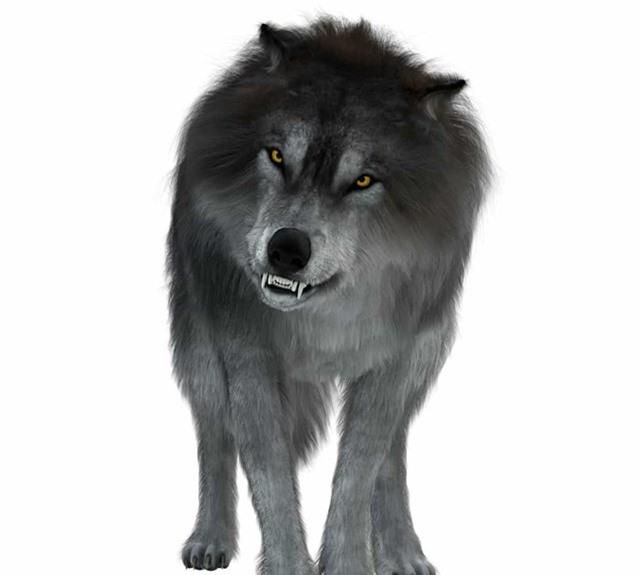 Chân dung những loài động vật thời tiền sử - Ảnh 4