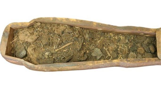 Mở quan tài rỗng trong bảo tàng, phát hiện xác ướp 2.600 tuổi - Ảnh 3.