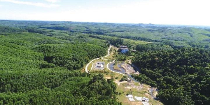 Bảo vệ rừng và tăng diện tích rừng phòng hộ
