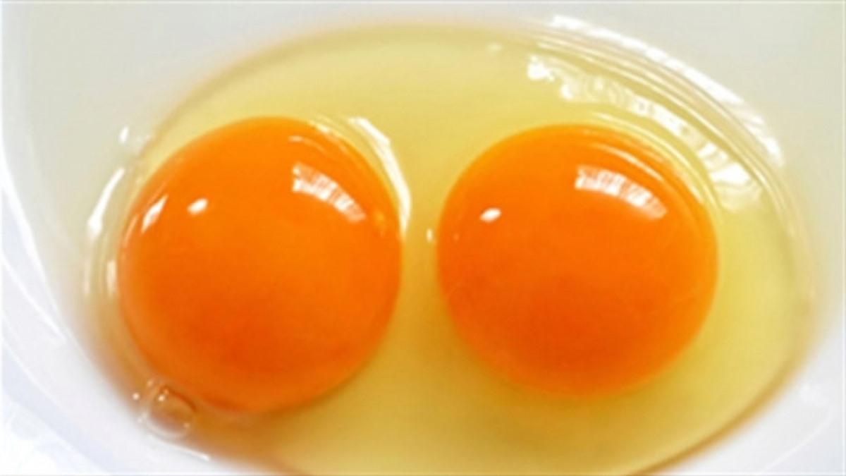 Trứng đập ra lòng đỏ còn có độ nhô cao như này là có thể sử dụng được (Ảnh minh họa: internet)