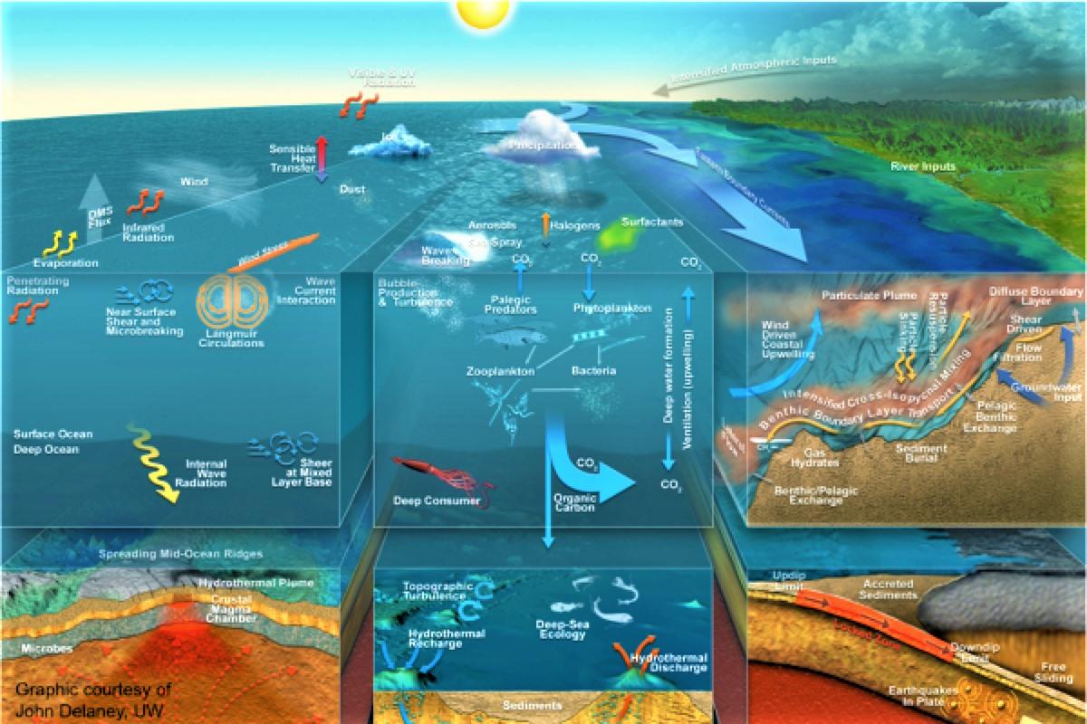 Lĩnh vực nghiên cứu của Hải dương học rất rộng, phục vụ cuộc sống con người; Nguồn: hydro-international.com