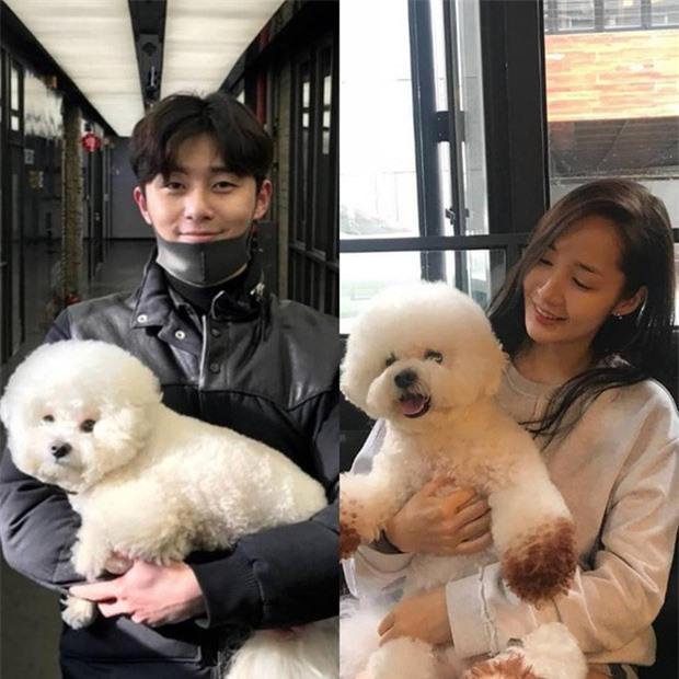 Sau chiếc thìa huyền thoại, đến... cái ly phản chiếu chi tiết hint hẹn hò của Park Min Young - Park Seo Joon - Ảnh 8.