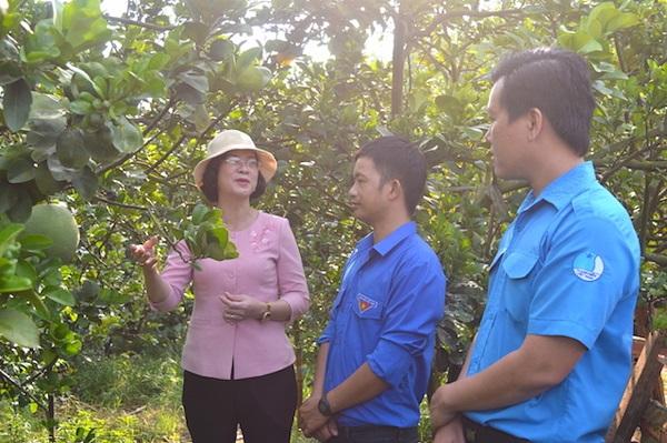 Phó Chủ tịch UBND tỉnh Bình Phước Trần Tuyết Minh (bìa trái) và Phó Bí thư Tỉnh Đoàn Trần Hoàng Trực (bìa phải) thăm mô hình trồng bưởi da xanh của đoàn viên Nguyễn Huy Đông, xã Long Giang, TX. Phước Long.