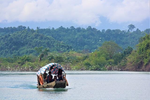 Phong cảnh hữu tình vườn quốc gia Vũ Quang