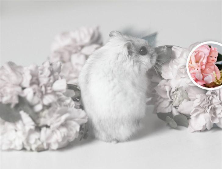 Đố vui tinh mắt: Thử tìm đồ giấu kín trong 10 bức hình rực rỡ