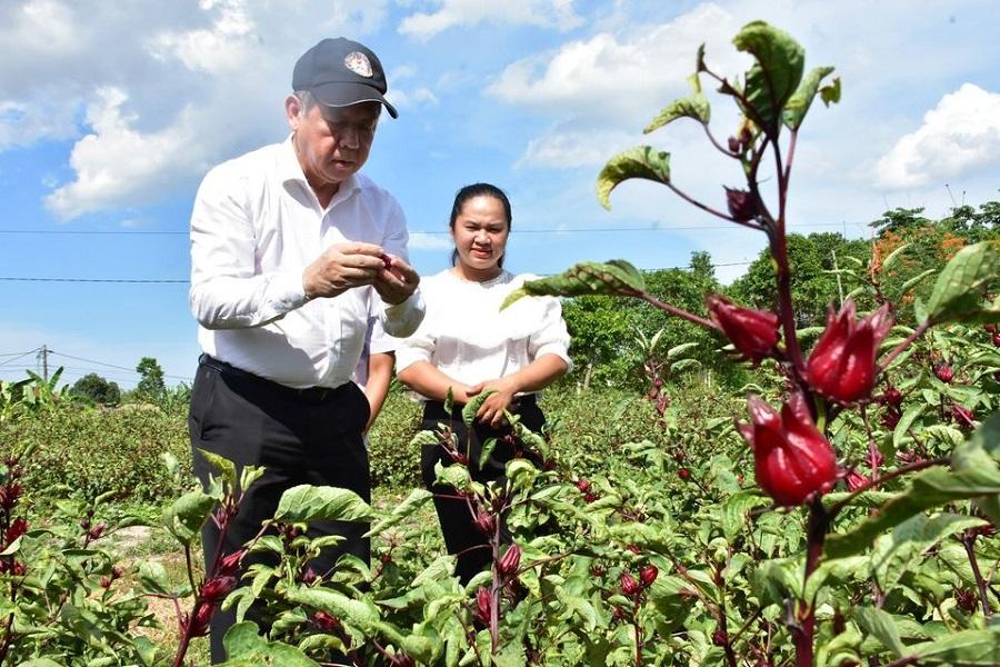 Chủ tịch UBND tỉnh Thừa Thiên Huế Phan Ngọc Thọ thăm mô hình khởi nghiệp của tỉnh.